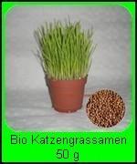 Unsere BIO Katzengras Samen (Triticum aestivum) 50 g sind ca. 900 Samen reichen für ca. 15 Pflanztöpfe a' 10 cm und ist billiger als fertiges Bio Katzengras.