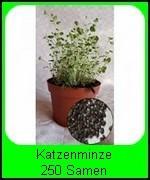 Die Katzenminze Samen ca. 250 Samen reichen für ca. 250 Pflanzen. Das reicht für ca. 10 Pflanztöpfe a' 10 cm.